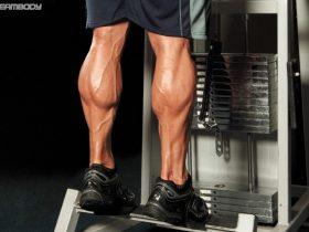 دستگاه ساق پا ایستاده
