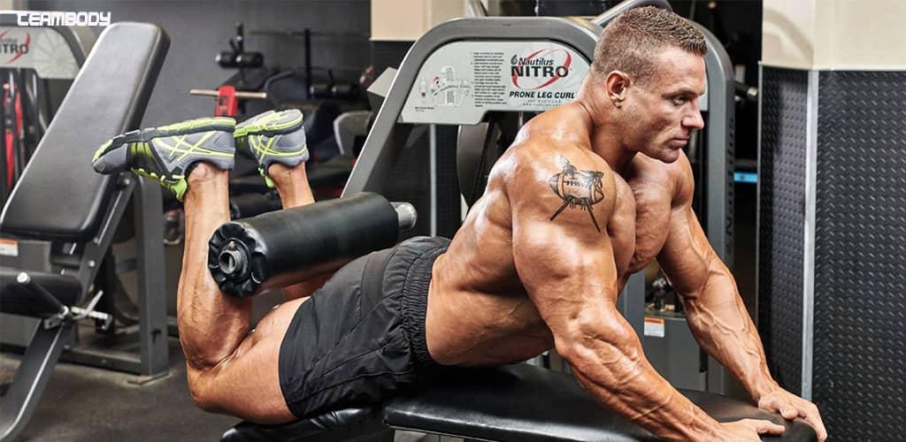 حرکات پا در بدنسازی یکی از پایه ای ترین حرکات بدنسازی محسوب می شوند.